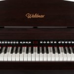 Waldman Piano Digital StylishGrand 88 SYG 88