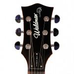 Waldman - Guitarra Semiacustica Duke Flamish Finale GHJ_250 CW