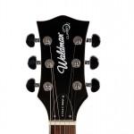 Waldman - Guitarra Semiacustica Prince Stripe GHO_141