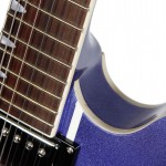 Waldman - Guitarra Semiacustica Prince Stripe Bigsby GHO_141 BG