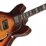 Waldman - Guitarra Semiacustica Prince Flamish GHO_250