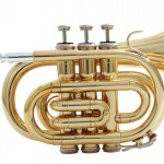 Waldman - Sopro Trompete Pocket WPT GD